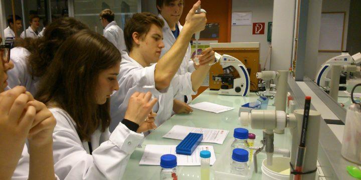 Lernen von Wissenschaftlern und Forschen im Labor – Die 7A im Vienna Open Lab