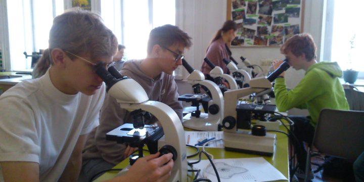 Experimentelles Arbeiten im Biologielabor