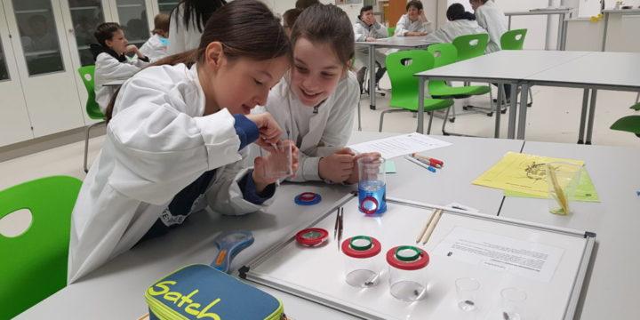 Besuch der 1c im Lehr- und Lernlabor