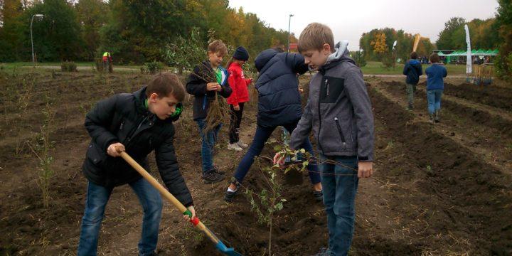 Aufforsten mitten in Wien – Wir pflanzen Bäume und Sträucher