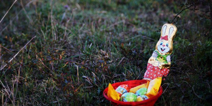 FM-U18 Ostersendung mit Berichten zum Fernlernen