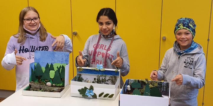 """Der """"Wald im Schuhkarton"""" – ein Projekt der 2D"""