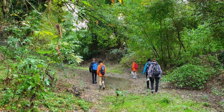 Endlich raus! – Biologie-Exkursion in die Donau-Auen in Petronell am 28.09.2020 der 5A