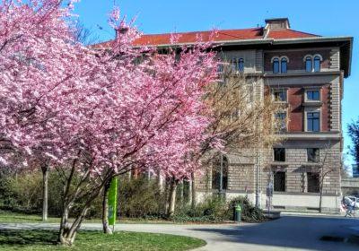 FM-U18: Die Frühlingssendung 2021